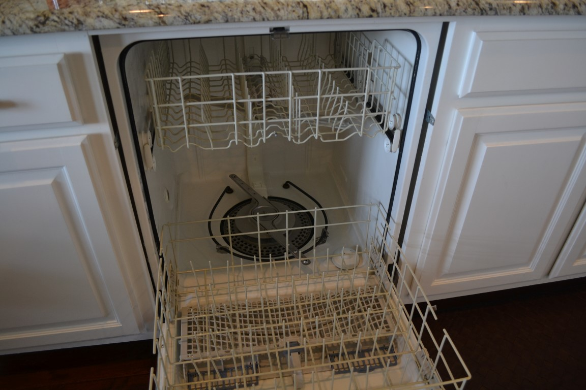 Going healthy how to cook fish in your dishwasher going dad for My dishwasher smells like fish